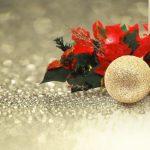 一年のご褒美はこだわりコスメ♡ナチュラル&オーガニッククリスマスコフレ4選【2017】