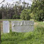 お肌に優しい植物由来の洗濯洗剤5選。人にも環境にもエコしよう。
