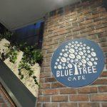 渋谷でハワイ発のオーガニック&ヴィーガン食べられる「Bluetree tokyo」