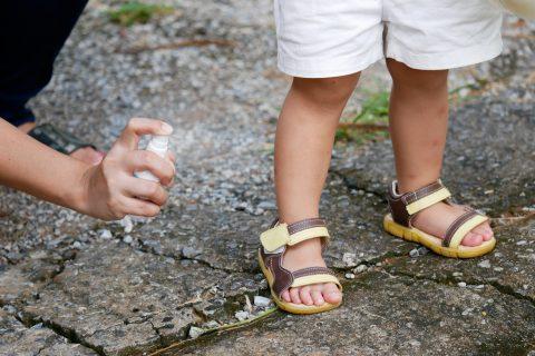 虫除けアロマ|夏の行楽シーズンに!子どもにも使える虫除けに効果的な精油やアロマクラフト